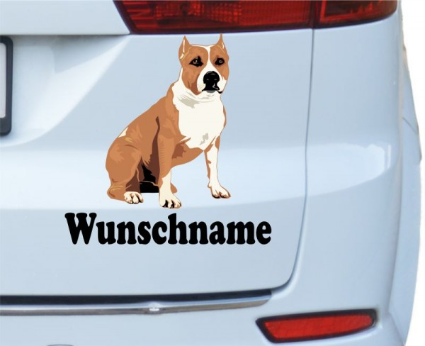 American Staffordshire Terrier mit Wunschname